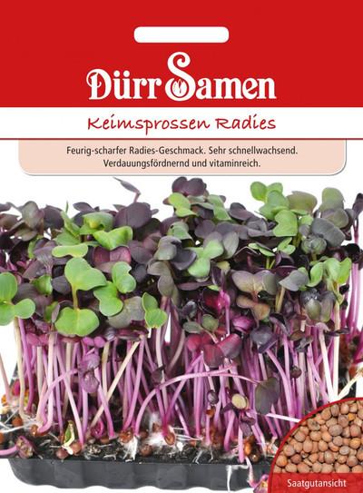 Keimsprossen Radies | Bio-Keimsprossen von Dürr Samen