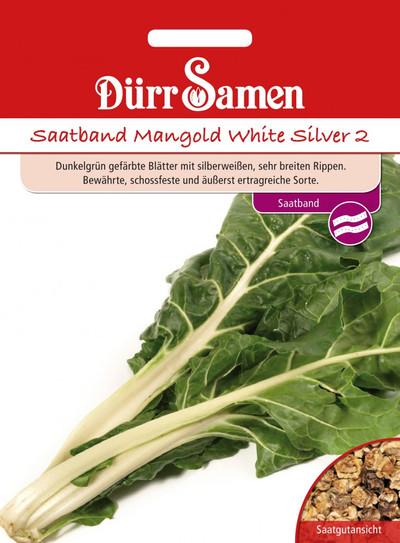Mangold White Silver Saatband | Mangoldsamen von Dürr Samen