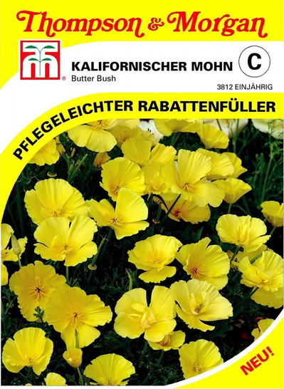 Kalifornischer Mohn Butter Bush | Kalifornische Mohnsamen von Thompson & Morgan