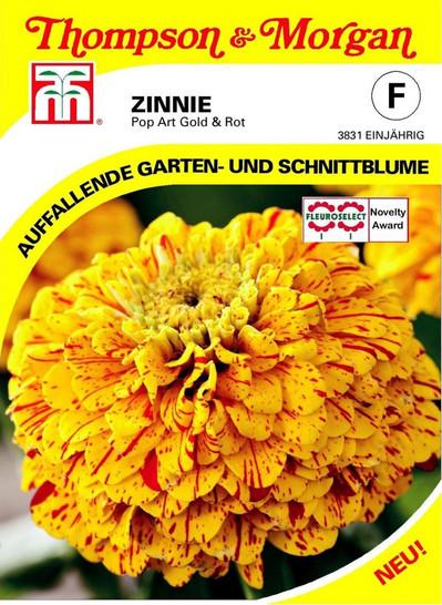Zinnie Pop Art Gold & Rot | Zinniensamen von Thompson & Morgan [MHD 01/2020]