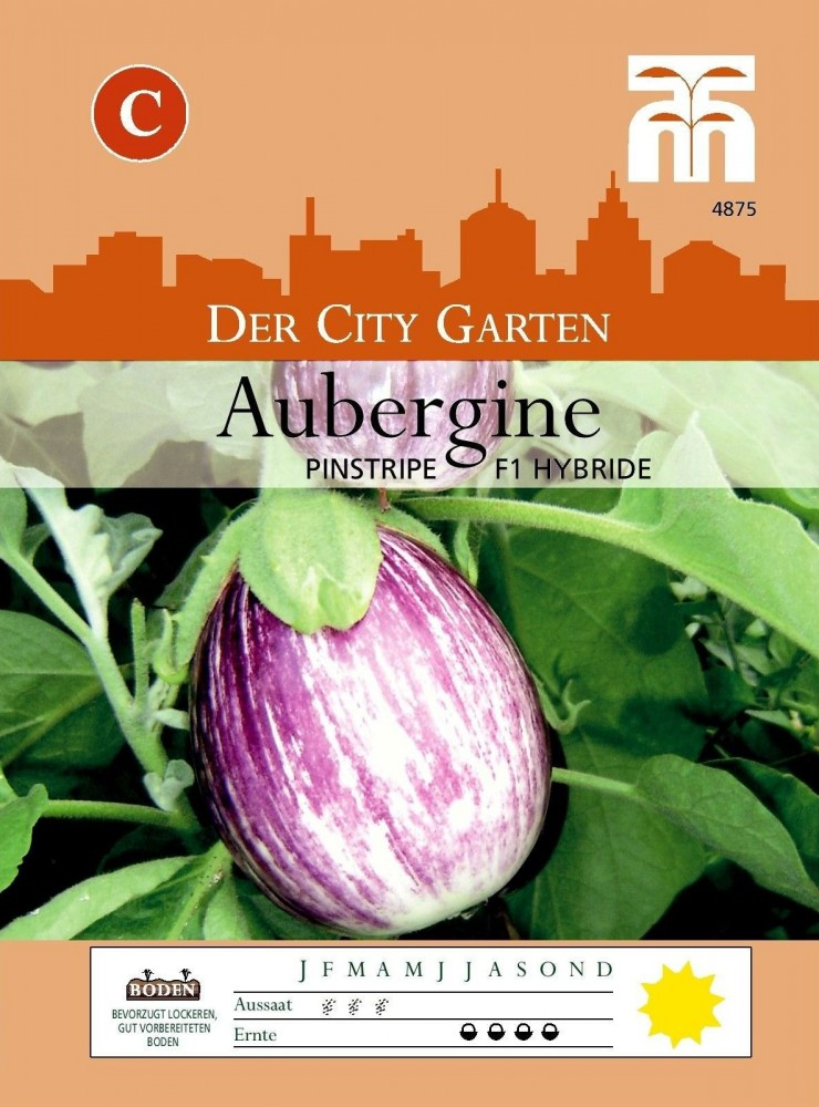 Aubergine  ROSA BIANCA 30 Samen EIERBAUM Solanum Melongena