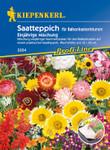 Balkonkastenblumen 12,5 x 80 cm Einjährige Mischung | Saatteppich von Kiepenkerl