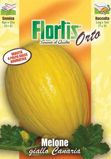 Obstsamen - Gelbe Kanarische Honigmelone Melone Giallo Canaria 3 von Flortis