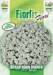 Strand-Silberkraut weiß | Silberkrautsamen von Flortis