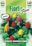 Celosie Mischung | Celosiensamen von Flortis