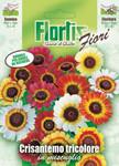 Bunte Sommermargeritemischung | Margeritensamen von Flortis