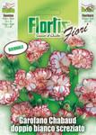 Landnelke | Landnelkensamen von Flortis
