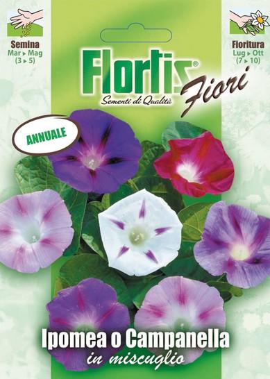Prunkwinde Mischung   Prunkwindensamen von Flortis
