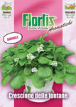 Brunnenkresse | Brunnenkressesamen von Flortis