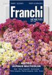 Sommeraster Alpinus Multicolor | Asternsamen von Franchi Sementi