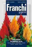 Federbusch Plumosa Alta Multicolor von Franchi Sementi