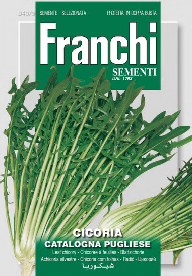 Salatsamen - Schnittzichorie Catalogna Pugliese von Franchi Sementi