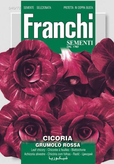 Schnittzichorie Rossa Di Verona Tardiva | Salatsamen von Franchi Sementi