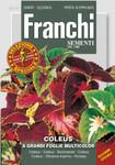 Buntnessel A Grandi Fiori Multicolor von Franchi Sementi