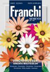 Buschige Kabringelblume Sinuata Mix von Franchi Sementi