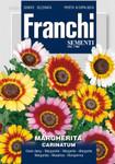 Margerite Carinatum Multicolor von Franchi Sementi