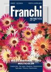 Mittagsblume Multicolor | Mittagsblumensamen von Franchi Sementi