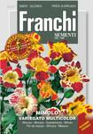 Gaucklerblume Variegato Multicolor | Gaucklerblumensamen von Franchi Sementi [MHD 12/2019] [MHD 12/2019]