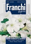 Petunie Nana Compatta Weiß von Franchi Sementi