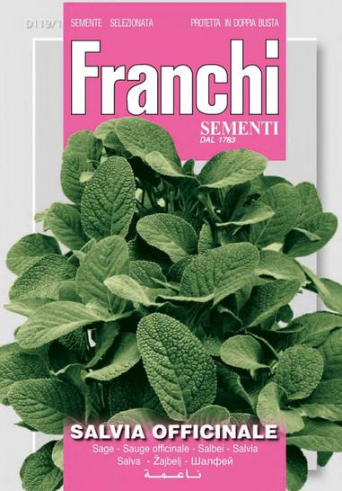Salbei Officinalis   Salbeisamen von Franchi Sementi