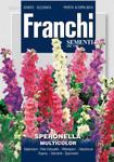 Rittersporn Mischung | Blumenmischung von Franchi Sementi