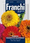 Zinie Gigante Di California Mehrfarbig | Ziniensamen von Franchi Sementi