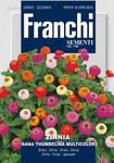 Zinie Nana Thumbelina Multicolor | Ziniensamen von Franchi Sementi