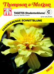 Studentenblume Alumia Vanilla Cream | Studentenblumensamen von Thompson & Morgan [MHD 01/2020]