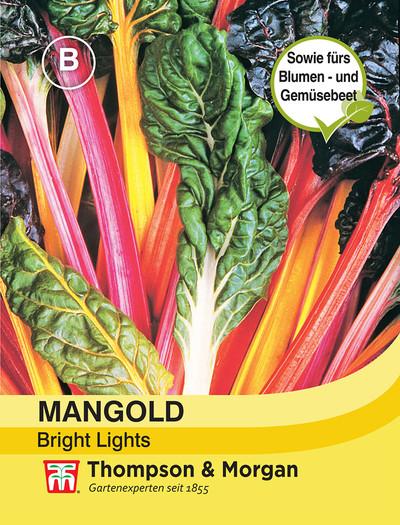 Mangold Bright Lights | Mangoldsamen von Thompson & Morgan