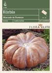 Kürbissamen - Kürbis Muscade de Provence von Flora Elite