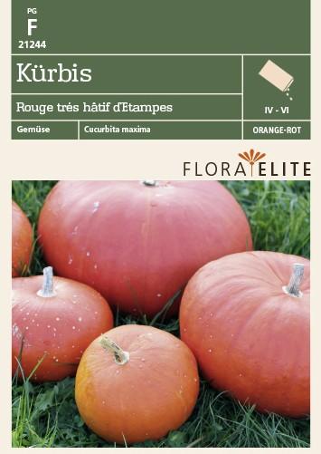 Kürbissamen - Kürbis Rouge trés hâtif d´Etampes von Flora Elite
