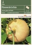 Riesenkürbis Jaune gros de Paris | Kürbissamen von Flora Elite
