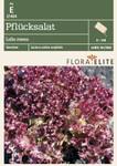 Pflücksalat Lollo rossa | Salatsamen von Flora Elite