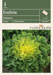 Salatsamen - Endivie Eminence von Flora Elite [MHD 06/2019]