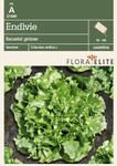 Endivie Escariol grüner | Salatsamen von Flora Elite [MHD 06/2020]