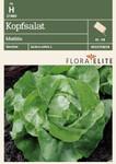 Salatsamen - Kopfsalat Matilda von Flora Elite [MHD 06/2019]