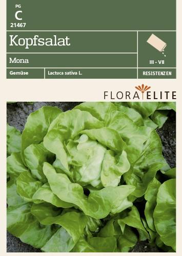 Salatsamen - Kopfsalat Mona von Flora Elite