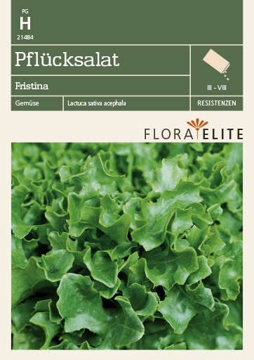 Pflücksalat Fristina [MHD 06/2018]   Salatsamen von Flora Elite