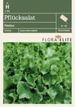 Pflücksalat Fristina | Salatsamen von Flora Elite