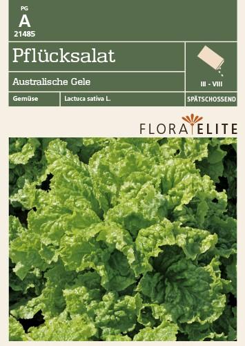 Pflücksalat Australische Gele | Salatsamen von Flora Elite [MHD 06/2020]