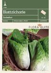 Blattzichorie Zuckerhut | Blattzichoriesesamen von Flora Elite [MHD 06/2020]