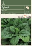 Spinat Matador | Spinatsamen von Flora Elite [MHD 06/2020]
