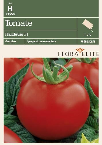 Tomatensamen - Tomate Harzfeuer F1 von Flora Elite