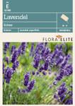 Lavendel Echter von Flora Elite