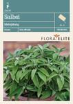 Salbei Mehrjährig von Flora Elite [MHD 06/2019]