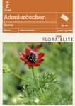 Adonisröschen Blutrot von Flora Elite [MHD 06/2018]