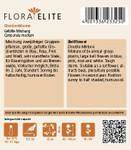Glockenblume Gefüllte Mischung [MHD 06/2019]   Glockenblumensamen von Flora Elite