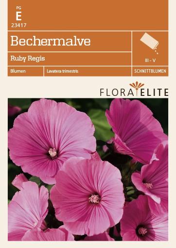 Bechermalve Ruby Regis von Flora Elite