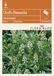 Duft-Reseda Bienenweide von Flora Elite [MHD 06/2018]