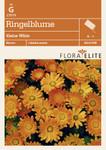 Ringelblume Kleine Wilde von Flora Elite